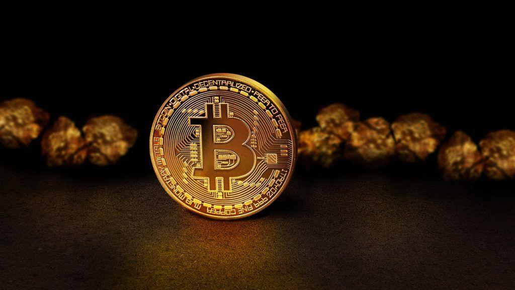 Cos'è un portafoglio bitcoin